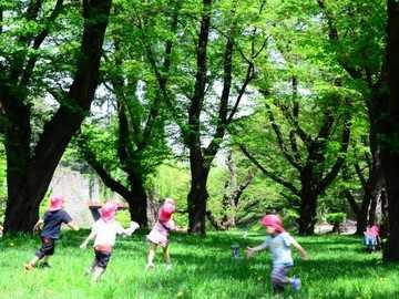 こどもたちが伸びのび遊ぶ、自然の中の宿泊施設です。